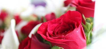 Room Angelz - Wedding Services | Wedding Supplies | Silk Flowers